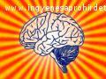 Pszichológiai asszisztens képzés Zalaegerszegen